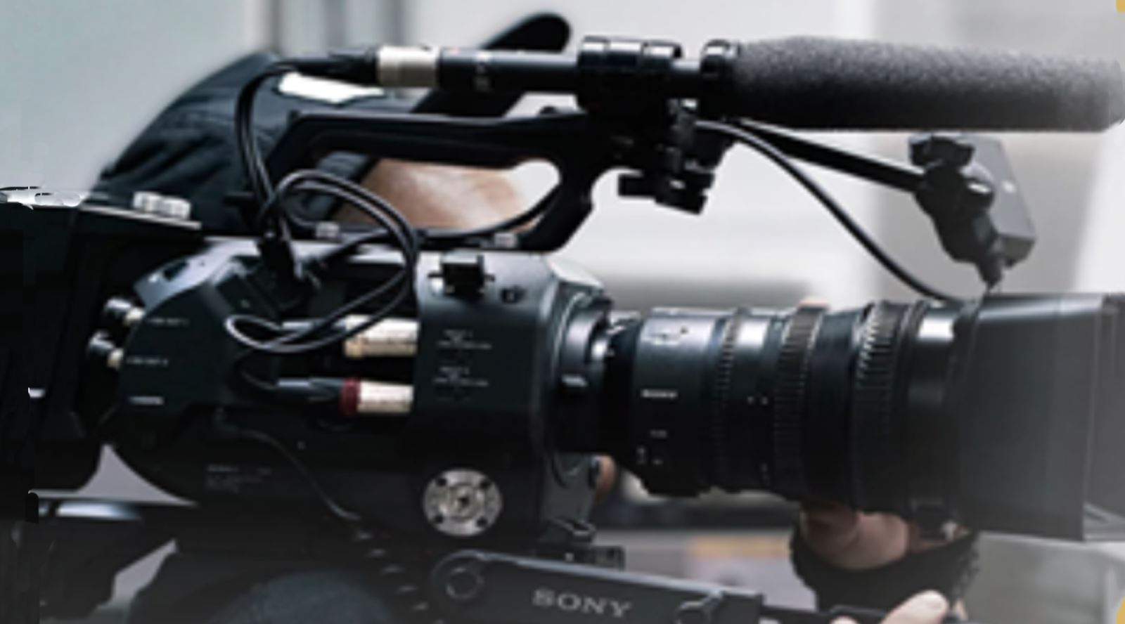 the guild of television camera professionals sony certified